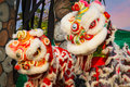 Lion Dance In A Chinese New Year`s Celebration Stock Images - 83416994