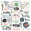 Set Of Hand Drawn Bio, Organic, Eco Product Logos, Badges, Tags.   Stock Photography - 83425972