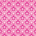 Cherry Flower Modern Symmetry Full Page Seamless Pattern Stock Photos - 83435413