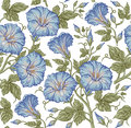 Seamless Pattern. Realistic Isolated Flowers. Vintage Baroque Background. Petunia. Wallpaper. Drawing Engraving. Vector Royalty Free Stock Image - 83488666