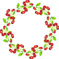 Cherries Circle Shape Royalty Free Stock Photography - 83548327