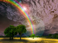 Blur God Bless Rainbow Dark And Sky Tree In Park Stock Photo - 83577240