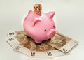 Piggy Bank With Euros Royalty Free Stock Image - 83609406