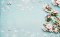 Springtime Background With Beautiful Spring Blossom In Pastel Color, Top View Royalty Free Stock Photos - 83693058