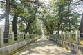 The Straight Walkway In Front Of The Historical Horyu Ji Royalty Free Stock Photography - 83720827