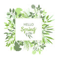 Hello Spring Green Card Design With Text In Square Floral Frame Stock Photography - 83746122