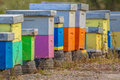 Colorful Bee Hives In A Row Royalty Free Stock Photo - 83761135
