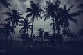 Beautiful Landscape Tropical Beach. Royalty Free Stock Photography - 83774617