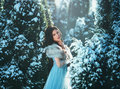Young Brunette Girl Is In Blue Vintage Dress Stock Photography - 83811622