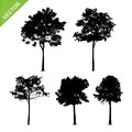Tree Silhouettes Vector Stock Photography - 83847542