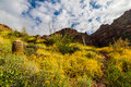 Carney Springs Trail Is Located In The Remote Area Of The Superstition Mountain Wilderness. Royalty Free Stock Image - 83888316