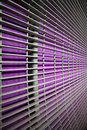Purple Grid Royalty Free Stock Photography - 8391467