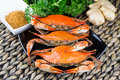 Hot Steamed Blue Crabs With Ginger. Maryland Crabs. Cooked And Ready To Eat. Royalty Free Stock Photo - 83973035