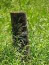 Fence Post2 Stock Images - 849384