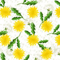 Seamless Dandelion Pattern Vector. Stock Image - 84077531