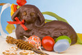 Easter Still Life Stock Images - 8414334