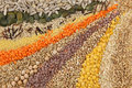 Various Seeds And Grains Royalty Free Stock Image - 8416246