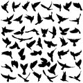 Concept Of Love Or Peace. Set Silhouettes Doves. Vector Illustration Stock Photography - 84103822