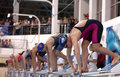 Start Of Women Breaststroke Swimming Competition During Salnikov Cup Stock Photography - 84112332