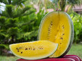 Yellow Watermelon Close Up, Outdoors Royalty Free Stock Images - 84141859