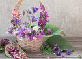 Still Life With Summer Flowers Royalty Free Stock Image - 84148126