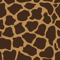 Seamless Vector Pattern With Animal Prints. Stock Photos - 84158513