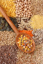 Various Seeds And Grains Stock Image - 8425771