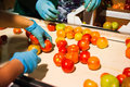 Red Tomatoes On Vegetable Processing Factory Stock Photo - 84223670