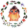 Watercolor Frame With Forest Animals For Baby Shower, Kindergarten, School, Education, T-shirt Royalty Free Stock Image - 84281606