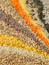 Various Seeds And Grains Stock Image - 8439271