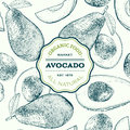 Vector Hand Drawn Avocado Seamless Pattern. Whole , Sliced Pieces, Half, Leaf And Seed Sketch. Tropical Summer Fruit Royalty Free Stock Photos - 84353158