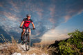Cyclist On Mountain Bike Races Downhill In The Nature Stock Images - 84354884