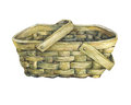 Basket Wattled From Wood. Royalty Free Stock Photography - 84385167