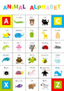 Animal Zoo Alphabet Poster. Cute Cartoon Character Set. Isolated. White Background Flat Design. Baby Children Education. Alligator Stock Images - 84394074