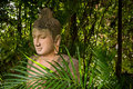 The Stone Buddha Statue In Forest Background Royalty Free Stock Photo - 84512865