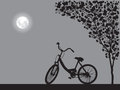 One Bicycle Parking Under Blooming Flower Tree, Floral Shadow Backdrop Stock Image - 84581961