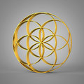 3D Sign Seed Of Life Gold 2 Stock Images - 84618774