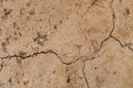 Cracked Dry Land Stock Images - 84701734