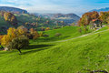 Green Meadows And Typical Switzerland Village Near Town Of Interlaken Stock Photography - 84734582