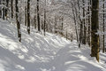Winter Mountain Scenery In Bieszczady Mountains Royalty Free Stock Image - 84780706