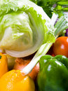 Vegetable Royalty Free Stock Photo - 8488775