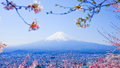 Mt. Fuji With Cherry Blossom (Sakura )in Spring, Fujiyoshida, Ja Stock Photography - 84854102