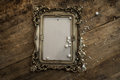 Baroque Photo Frame With Pearls Stock Image - 84879281