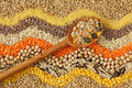Various Seeds And Grains Royalty Free Stock Photos - 8490368
