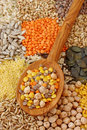 Various Seeds And Grains Stock Photo - 8493310