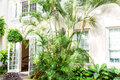 Hotel Facade With Palms And Plants. Royalty Free Stock Photo - 84945445