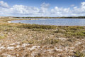 Scenic View Over One Of The Beaches Of Rottnest Island, Australi Stock Image - 84992441