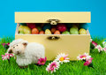 Box Of Easter Eggs And Cute Sheep Royalty Free Stock Image - 8504566