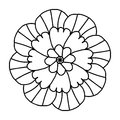 Doodle Flower For Coloring Books Royalty Free Stock Image - 85086956