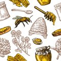 Seamless Pattern With Honey, Bee, Hive, Clover, Spoon, Cracker, Honeycomb. Royalty Free Stock Photo - 85205225